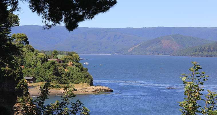 Evaluación biodiversidad sur Chile